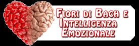 Vai alla pagina Facebook Fiori di Bach e Intelligenza Emozionale, consigli e contenuti per problemi sentimentali, personali, di coppia, d'ansia, come affrontarli con i Fiori di Bach e Australiani, per vivere meglio. Consulenza a Torino
